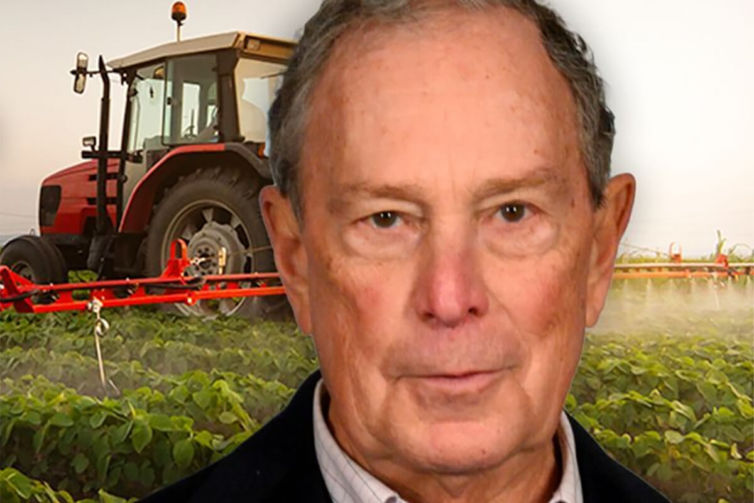 Bloomberg Farmers